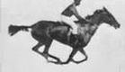 First Motion Picture Horse, 1878 - www.pastfinder.de