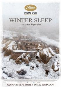 Sono de Inverno - Poster / Capa / Cartaz - Oficial 3