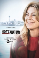 Grey's Anatomy (15ª Temporada)