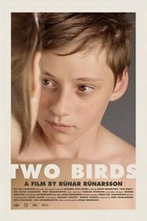 Dois Pássaros - Poster / Capa / Cartaz - Oficial 1