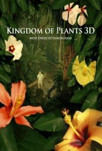 O Reino das Plantas - Poster / Capa / Cartaz - Oficial 1
