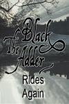 Blackadder Rides Again - Poster / Capa / Cartaz - Oficial 2