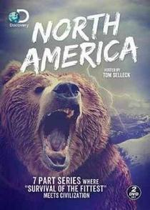 América do Norte - Poster / Capa / Cartaz - Oficial 2