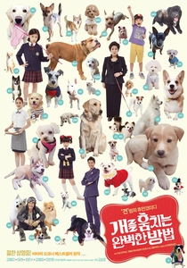 How to Steal a Dog - Poster / Capa / Cartaz - Oficial 5