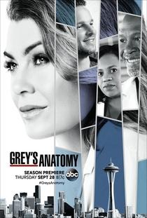 Grey's Anatomy (14ª Temporada) - Poster / Capa / Cartaz - Oficial 1