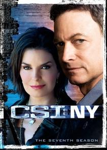 CSI: Nova York (7ª temporada) - Poster / Capa / Cartaz - Oficial 1