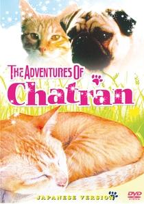 As Aventuras de Chatran - Poster / Capa / Cartaz - Oficial 3