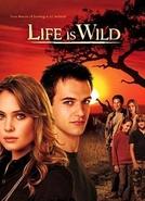 Life Is Wild (1ª Temporada)  (Life Is Wild (Season 1) )
