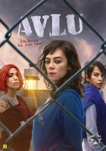 Prisão de Mulheres (2ª Temporada) - Poster / Capa / Cartaz - Oficial 1