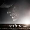 "Críutica: A Mula (""The Mule"") | CineCríticas"