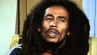 Marley Trailer Official 2012 [HD]