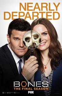 Bones (12ª Temporada) - Poster / Capa / Cartaz - Oficial 1