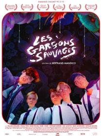 Os Garotos Selvagens - Poster / Capa / Cartaz - Oficial 1