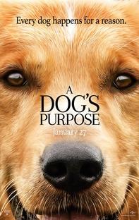 Quatro Vidas de Um Cachorro - Poster / Capa / Cartaz - Oficial 3
