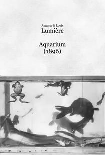 Aquarium - Poster / Capa / Cartaz - Oficial 1