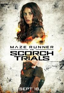 Maze Runner: Prova de Fogo - Poster / Capa / Cartaz - Oficial 7