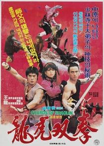 Ninja Contra Shaolin  - Poster / Capa / Cartaz - Oficial 3
