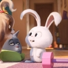 Novo trailer de Pets: A Vida Secreta dos Bichos 2 com Daisy e Capitão Bola de Neve