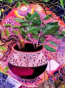 Ayahuasca, Eu e a Serpente - Poster / Capa / Cartaz - Oficial 1