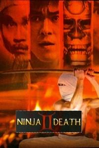 Guerras Ninjas pt.2 - Poster / Capa / Cartaz - Oficial 1
