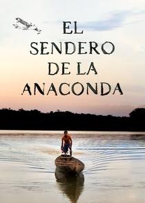 O caminho da anaconda - Poster / Capa / Cartaz - Oficial 1