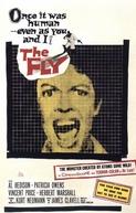 A Mosca da Cabeça Branca (The Fly)