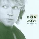Bon Jovi: Say It Isn't So (Bon Jovi: Say It Isn't So)