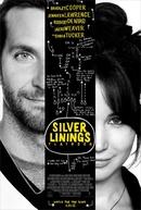 O Lado Bom da Vida (Silver Linings Playbook)