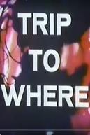 LSD: Trip to Where? (LSD: Trip to Where?)