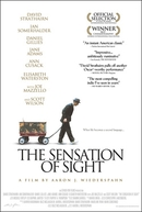 The Sensation of Sight (The Sensation of Sight)