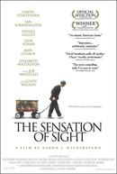 The Sensation of Sight (The Sensation of Sight)