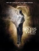 Aranhas Assassinas (In the Spider's Web)