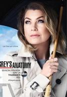 A Anatomia de Grey (12ª Temporada) (Grey's Anatomy (Season 12))