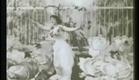 La fée aux choux (1896)