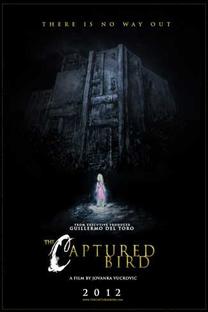 The Captured Bird - Poster / Capa / Cartaz - Oficial 2