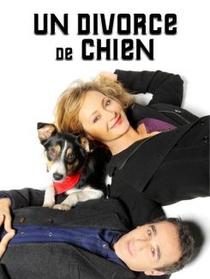 Un Divorce de Chien - Poster / Capa / Cartaz - Oficial 1