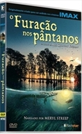 O Furacão nos Pântanos (Hurricane on the Bayou)