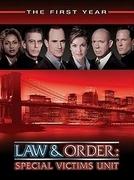 Lei & Ordem - Unidade de Vítimas Especiais (1ª Temporada) (Law & Order: Special Victims Unit (Season 1))