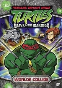 As Tartarugas Mutantes Ninja (3ª Temporada) - Poster / Capa / Cartaz - Oficial 1