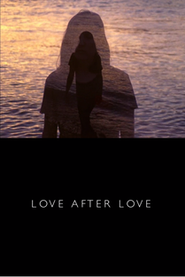 Love After Love - Poster / Capa / Cartaz - Oficial 1