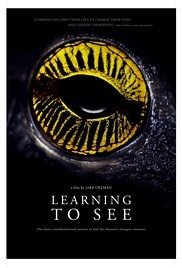 Learning to See: The World of Insects - Poster / Capa / Cartaz - Oficial 1