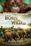 Livres Por Natureza (Born to be Wild)