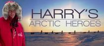harry's arctic heroes - Poster / Capa / Cartaz - Oficial 1