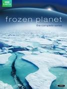 Planeta Gelado (Frozen Planet)