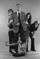 The Smith Family  (The Smith Family )