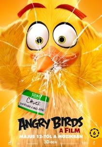 Angry Birds: O Filme - Poster / Capa / Cartaz - Oficial 13
