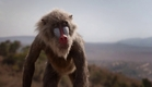 O Rei Leão - Primeiro trailer - 2019 nos cinemas