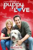 Família por Acaso (Puppy Love)