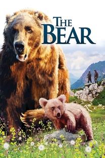 O Urso - Poster / Capa / Cartaz - Oficial 5