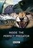 Por Dentro do Predador Perfeito